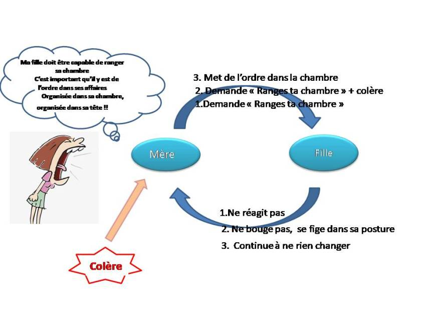 shema boucle systémique